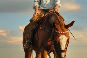 Chaps and Saddle